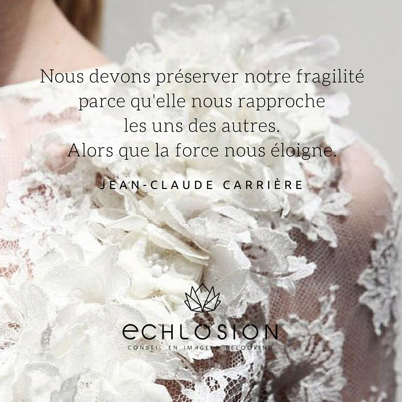 citation-fragile-force-echlosion